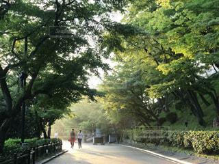 清水寺 - No.670482