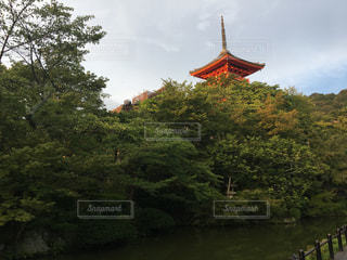 清水寺の写真・画像素材[670498]