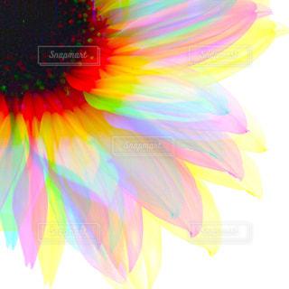 想像力。の写真・画像素材[2013386]