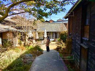 建物の側面に木がある道の写真・画像素材[3214438]