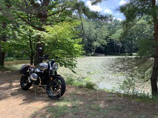 池とRninet Scramblerの写真・画像素材[3214416]