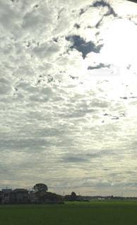 風景の写真・画像素材[130601]