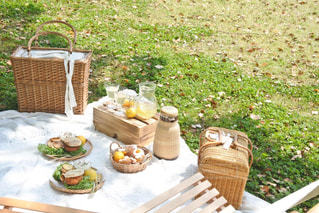 ピクニックの写真・画像素材[3303168]
