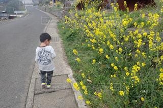 子どもの写真・画像素材[131186]