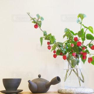 茶器と植物の写真・画像素材[3224407]