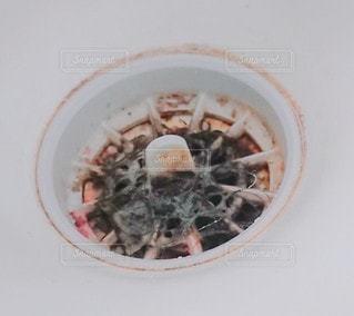 排水口の汚れの写真・画像素材[3372306]