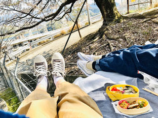 おさんぽ弁当の写真・画像素材[3224447]