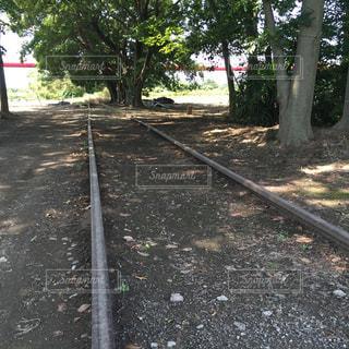 西武鉄道 安比奈線の写真・画像素材[131368]