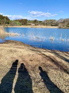 池の辺りの影の写真・画像素材[3908973]