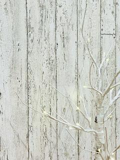 白い壁の近くの写真・画像素材[3948789]