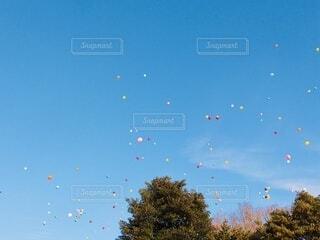 空に飛んでいく風船の写真・画像素材[4171527]