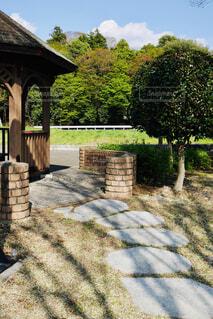 公園の石の道の写真・画像素材[4340315]