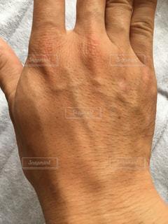 手の甲の写真・画像素材[3230530]