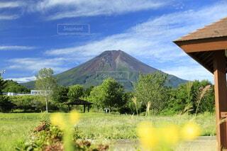 夏の富士山の写真・画像素材[3644629]