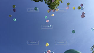 緑のボールの写真・画像素材[3239936]