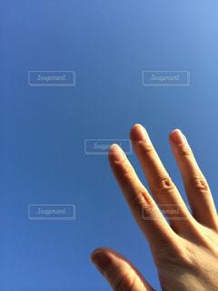 空へと延ばす手の写真・画像素材[1193574]