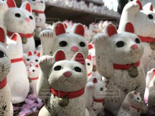 豪徳寺の招き猫の写真・画像素材[1203618]
