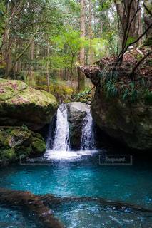 水量の多い湧水の写真・画像素材[3251892]