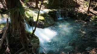 木漏れ日に光る水の写真・画像素材[3265931]