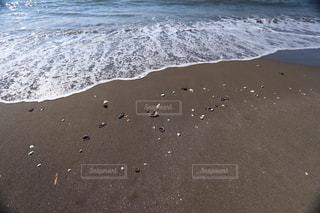 波打ち際と貝殻の写真・画像素材[3253728]