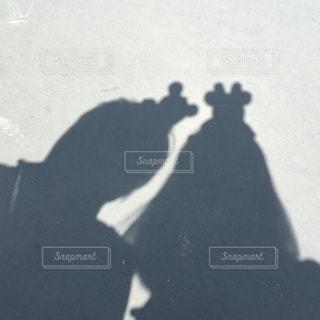 silhouetteの写真・画像素材[3267527]