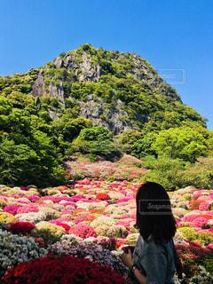 お花畑に飛び込みたいの写真・画像素材[1139660]