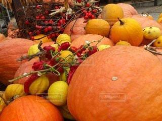秋色づくしの写真・画像素材[3258796]