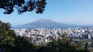 桜島と鹿児島市街の写真・画像素材[3260641]
