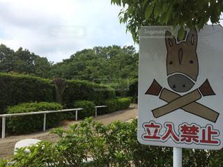 標識 - No.140089