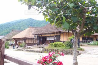 No.152002 風景
