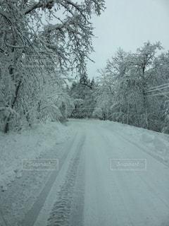 田舎の雪道の写真・画像素材[136858]