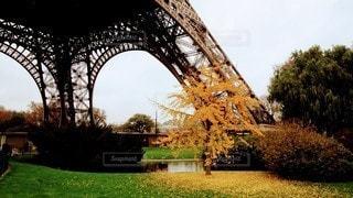 秋のエッフェル塔の写真・画像素材[3287890]