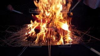 鰹の藁焼きの写真・画像素材[3262542]