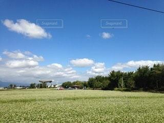 アルウィンの側の蕎麦畑の写真・画像素材[3266785]