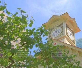 札幌時計台の写真・画像素材[3267061]