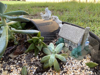 ミニチュア家の鉢植えの写真・画像素材[3311000]