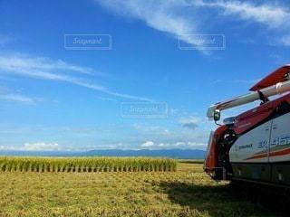 稲刈りの写真・画像素材[3273595]