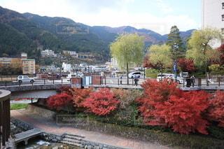 岐阜県下呂市の街並みと紅葉の写真・画像素材[3977828]