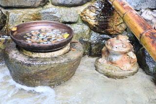 下呂温泉のカエルの置物と水に入ったお賽銭の写真・画像素材[3977852]