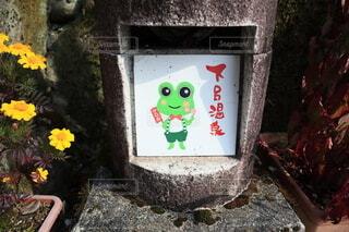 下呂温泉の道にあるカエルの写真・画像素材[3977863]