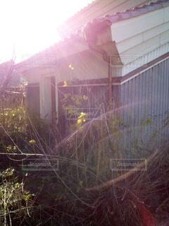 草のしげる建物の写真・画像素材[3957165]