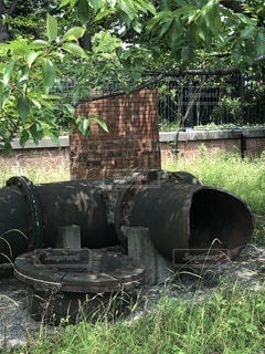 森の隣に座っている黒い消火栓の写真・画像素材[3289024]