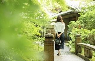 お寺巡りの写真・画像素材[3285815]
