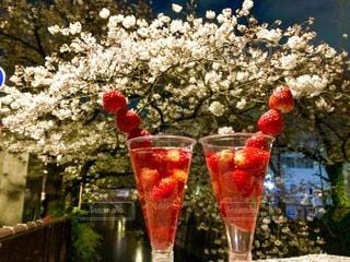 夜桜の写真・画像素材[3281938]