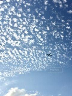 最高の空の写真・画像素材[3295457]