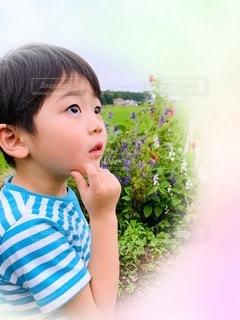 青いシャツを着た小さな男の子の写真・画像素材[3343277]