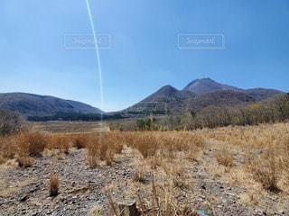 山を背景にした砂漠の畑のクローズアップの写真・画像素材[3288130]