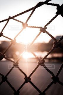 金属製のフェンスの写真・画像素材[3291128]