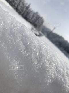 かき氷の写真・画像素材[980985]