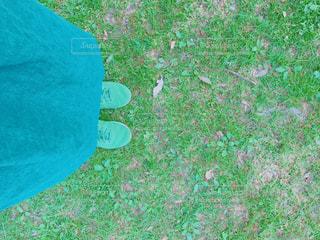 春のスカートの写真・画像素材[1729268]